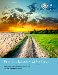 193550-Financing%20Recovery%20for%20Resilience%20Report