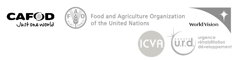 The Future of Humanitarian Funding Initiative is lead by CAFOD, FAO and World Vision International with the support of ICVA and Groupe URD