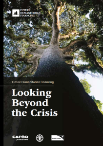Looking Beyond the Crisis - new report by FHF initiative